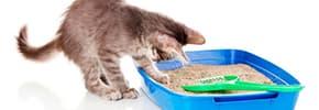 Туалеты и наполнители для кошек