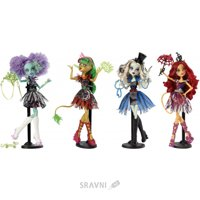 Куклу Mattel Monster High Монстроцирк (в ассорт.) (CHY01)