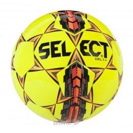 Мяч SELECT Delta 5